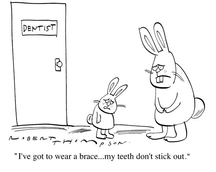 bunny braces